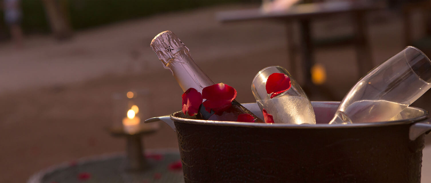 Sparkling Rose and Rose Petals